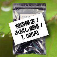 otameshiya-kon30