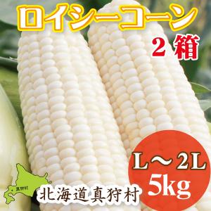 whitex2