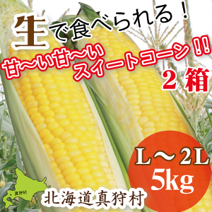 yellowx2